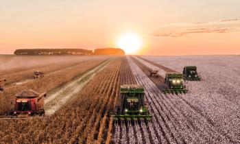 Soutien en faveur de l'innovation agricole